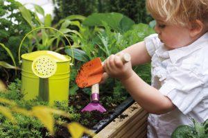 Kids growing food gardening raised vegetable bed
