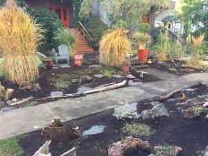 Garden clean up - autumn