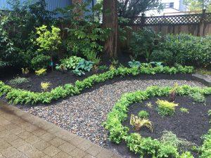Garden installation - boxwoods - river rock path