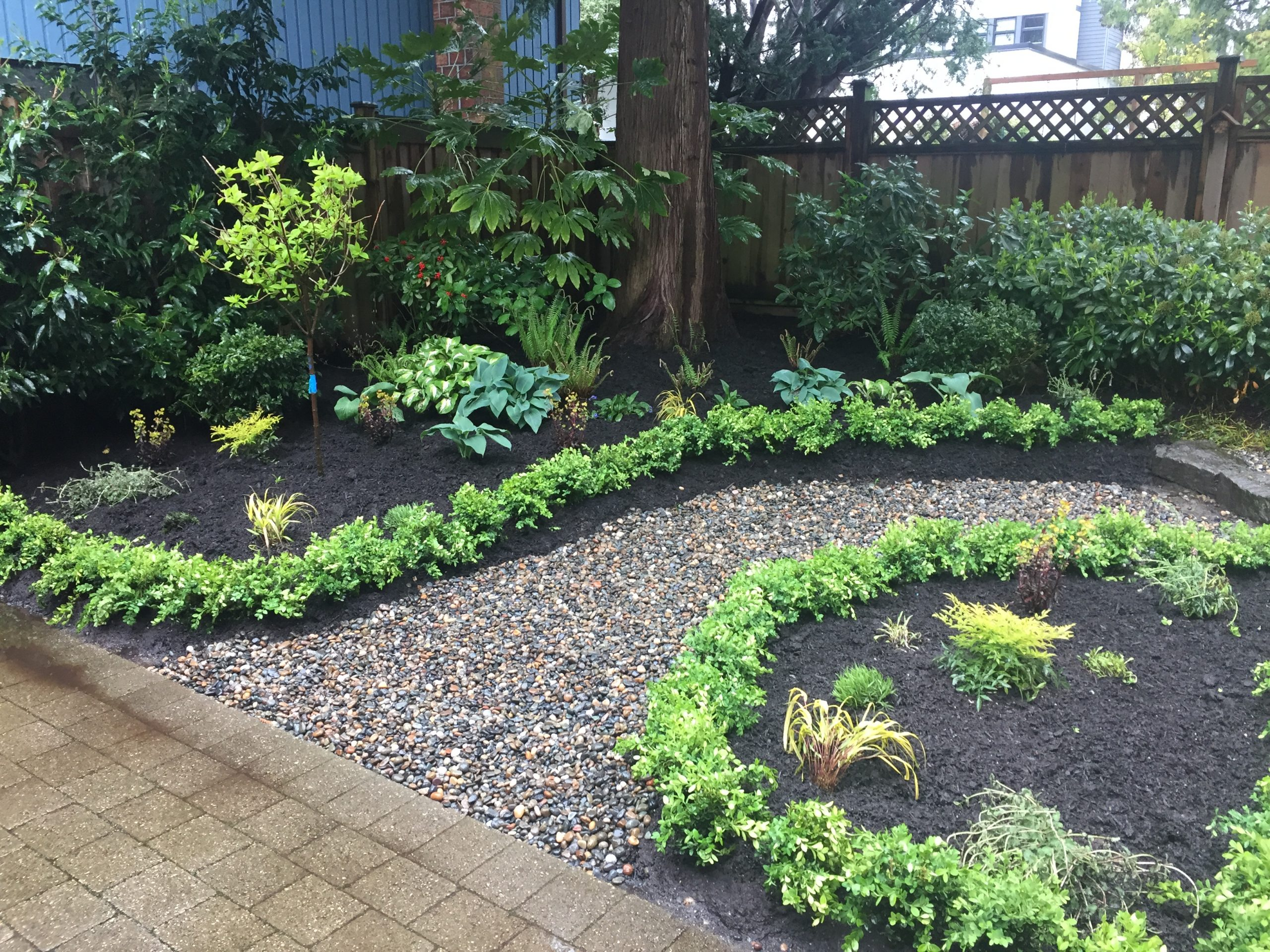 Garden installation - boxwoods - river rock path