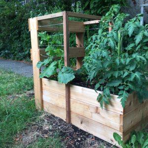 Pickling raised vegetable garden box