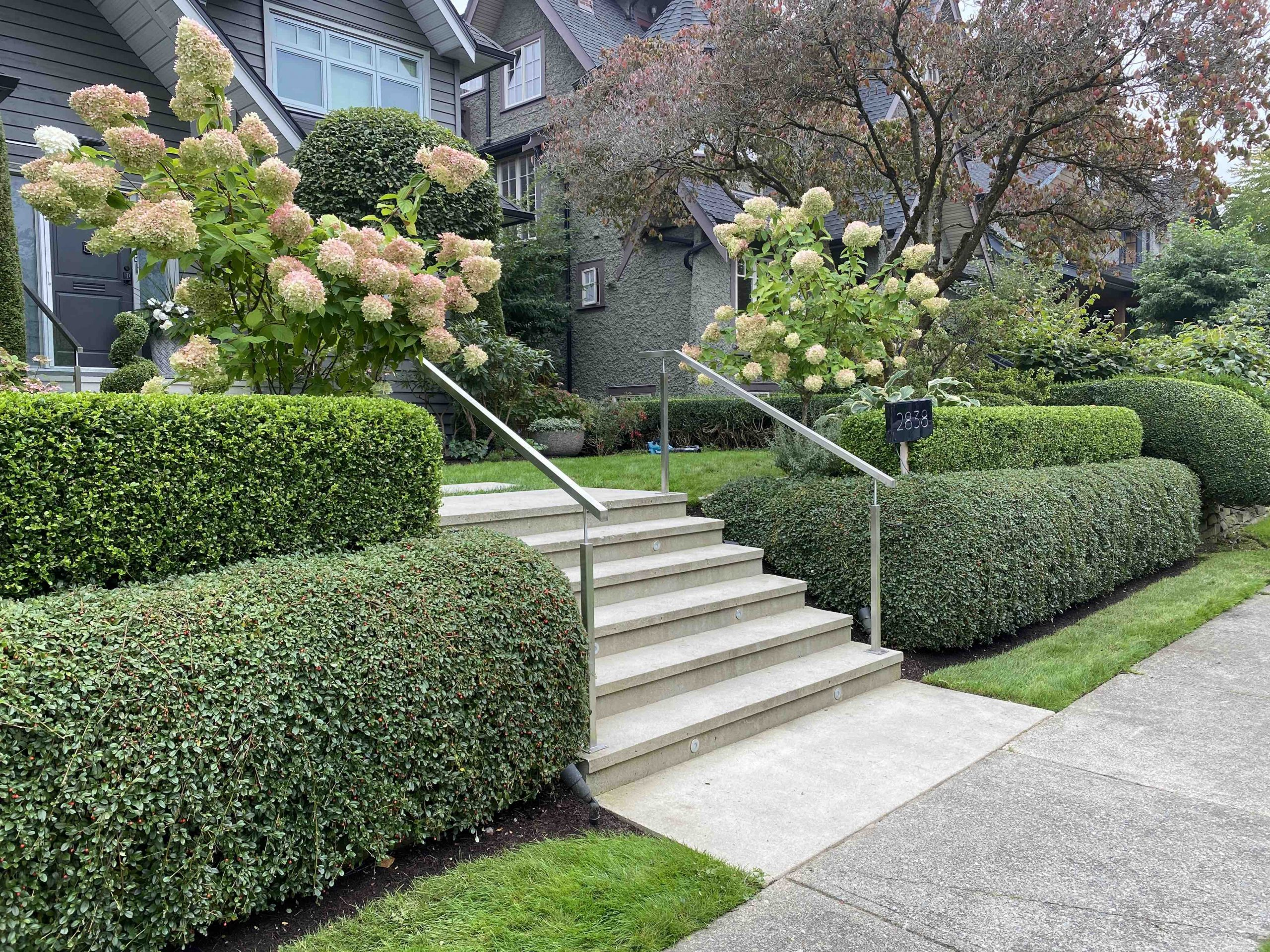 Hedge trimming Vancouver BC