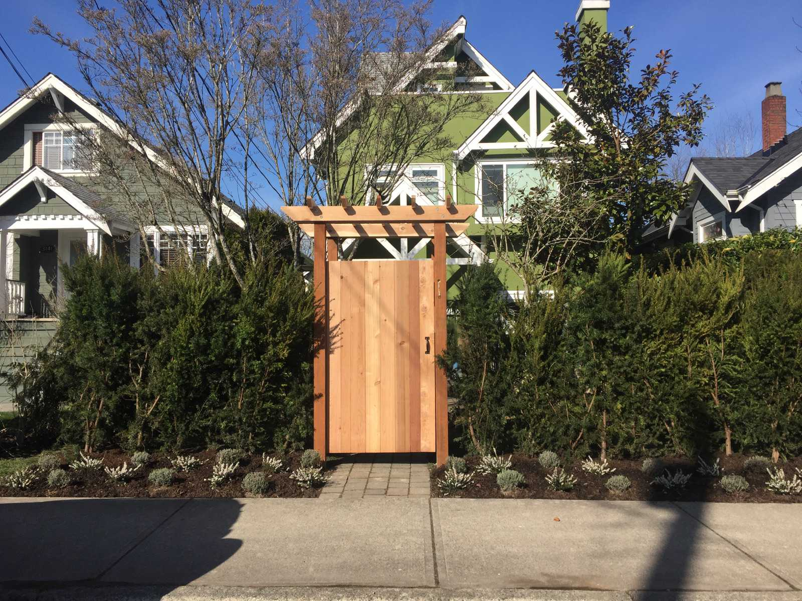 New yew hedge pergola and gate landscaping vancouver BC
