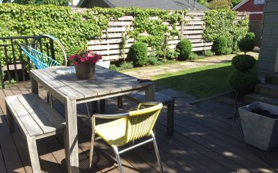 Grow a Green Living Fence in Your Vancouver Garden